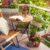 Comment aménager votre véranda en un sublime jardin ?